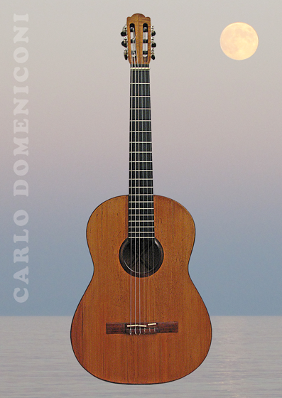 Carlo Domeniconi guitar series postcard design, March 2013